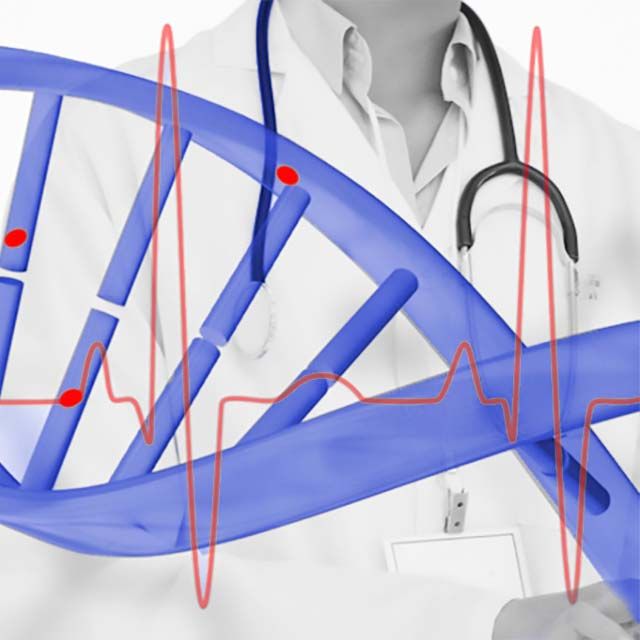Cardiovascular genetic counseling